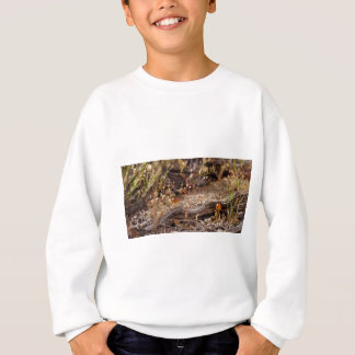 High Desert Shroom Sweatshirt