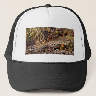 High Desert Shroom Trucker Hat