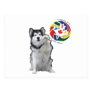 High Five - A celebration of our Canadian Athletes Postcard