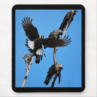 High Five - Baudin s Cockatoo Mouse Pad