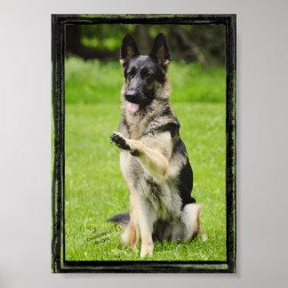 High Five German Shepherd Poster