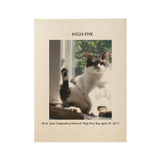 'HIGH FIVE' - Zack Cat Celebrating National Day Wood Poster