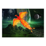 High Flying Phoenix Photo Print