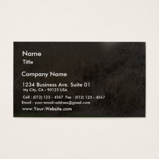 High Grass In Dried Lake Business Card