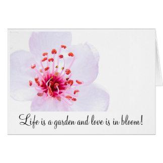 high-key-sakura-blossom-800, Life is a garden a... Stationery Note Card