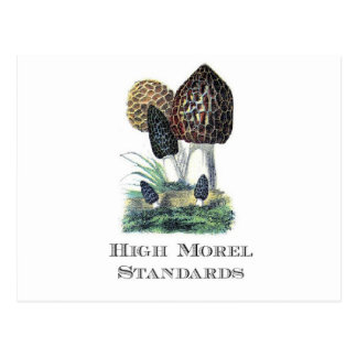 High Morel Standards Postcard