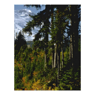 "High Mountain Trees 8.5"" X 11"" Flyer"