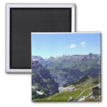 High pastures 2 inch square magnet