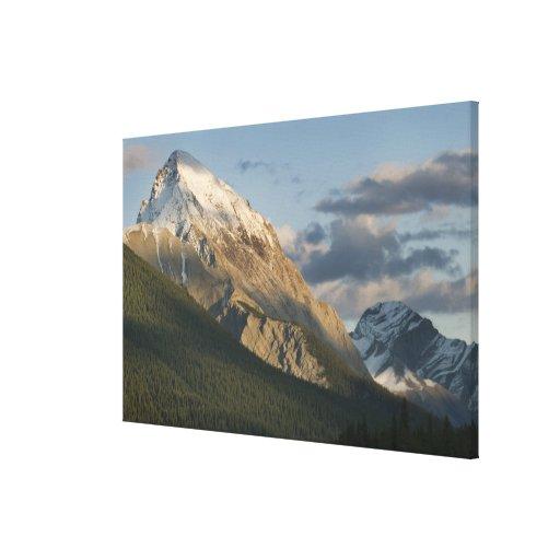 High peak near Maligne Lake, Jasper National Canvas Print
