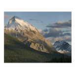 High peak near Maligne Lake, Jasper National Postcard