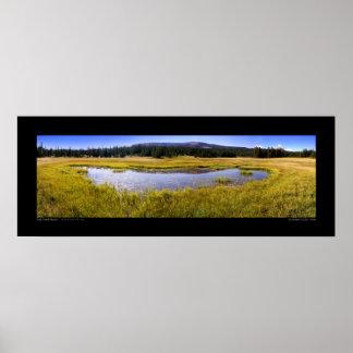High Uintah Meadow - panorama 240º August 28, 2005 Poster