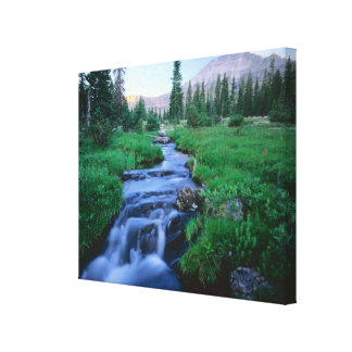 HIGH UINTAS WILDERNESS, UTAH. Stillwater Fork Canvas Print
