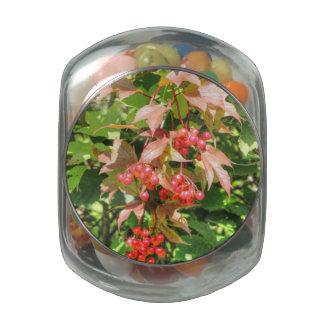 Highbush Cranberries Glass Candy Jars