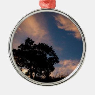Highest tree christmas tree ornaments