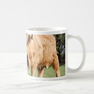 highland-cattle-3645 coffee mug