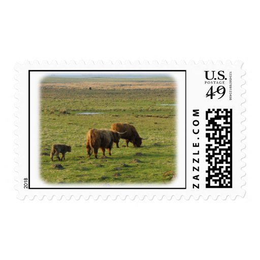 Highland Cattle 9T076D-003 Postage Stamps