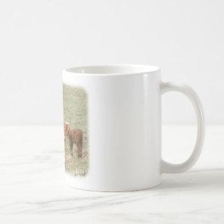 Highland Cattle 9Y316D-017 Coffee Mug