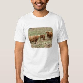 Highland Cattle 9Y316D-030 T Shirt