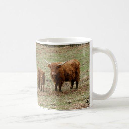 Highland Cattle 9Y316D-051 Classic White Coffee Mug