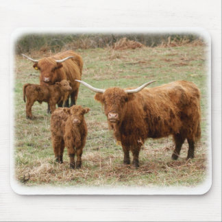 Highland Cattle 9Y316D-055 Mouse Pad