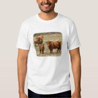 Highland Cattle 9Y316D-055 Shirt