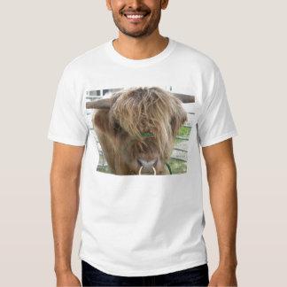 Highland cattle bull shirt