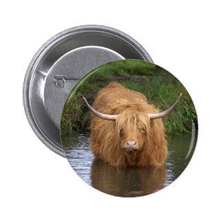 Highland Cattle 2 Inch Round Button