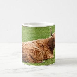 Highland Cattle Coffee Mug