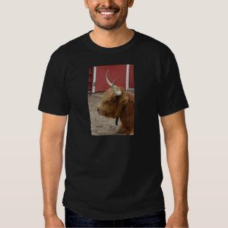 Highland Cattle Cow Tee Shirt