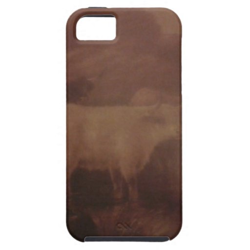 Highland Cattle iPhone 5 Cases