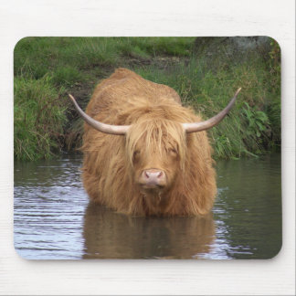 Highland Cattle Mouse Pad