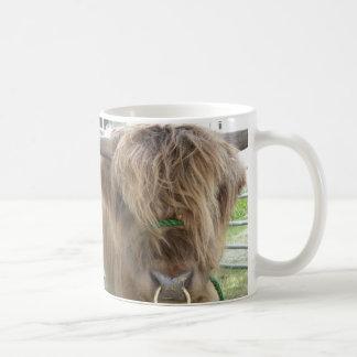Highland Cattle mug