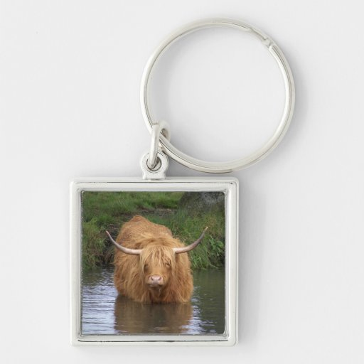 Highland Cattle Silver-Colored Square Keychain