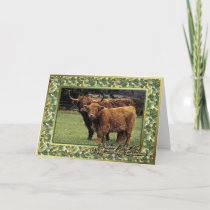 Highland Cow And Calf Blank Christmas Card