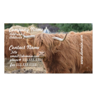 Highland Cow Business Cards
