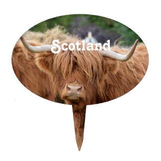Highland Cow Cake Pick