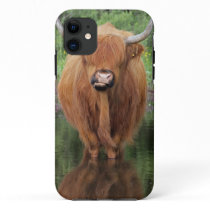 Highland cow iPhone 11 case