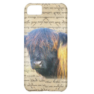 Highland cow cover for iPhone 5C