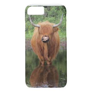 Highland cow iPhone 7 case