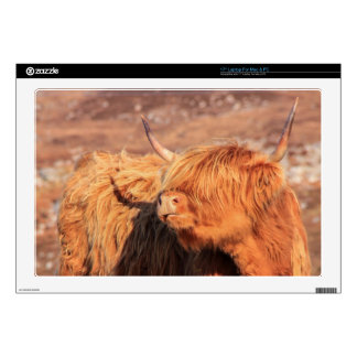 Highland Cow Laptop/Mac Laptop Skin