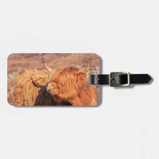 Highland Cow Luggage Tags