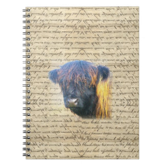 Highland cow spiral note books