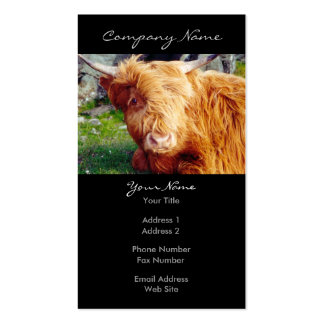 Highland Cow Photo Double-Sided Standard Business Cards (Pack Of 100)