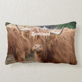 Highland Cow Throw Pillows