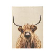 Highland cow scottish animal portrait wood poster