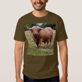 Highland Cow Tee