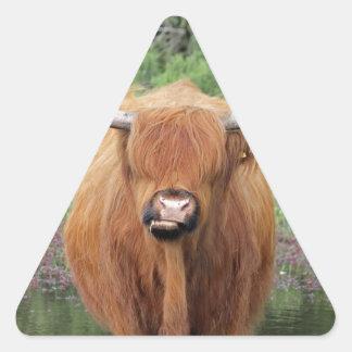 Highland cow triangle sticker