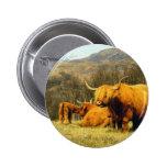 Highland Cows Pinback Button