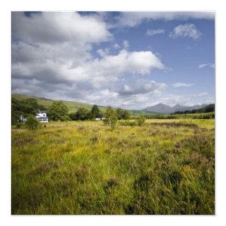 """Highland Landscape Card / Invitation 5.25"""" Square Invitation Card"""