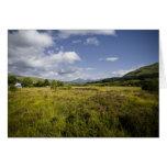 Highland Landscape • Greeting Card
